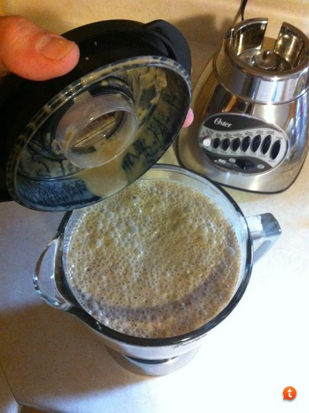 Kava Preparation - Micronized Blender Method | Kava Forums
